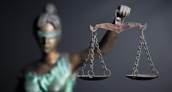 The rule of law needs to be strengthened with urgent constitutional reforms